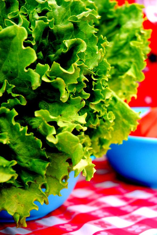 Lamb Lettuce Green Smoothie Recipe